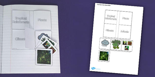 Living Things and their Habitats Tropical Rainforest Flap Book