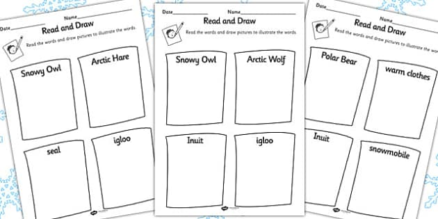 Polar Regions Read and Draw Activity Sheet - polar, read, draw, sheet