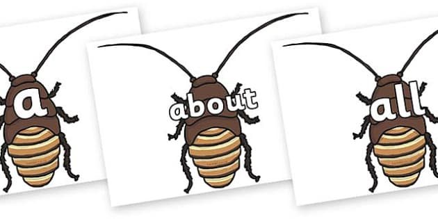 100 High Frequency Words on Cockroach - High frequency words, hfw, DfES Letters and Sounds, Letters and Sounds, display words