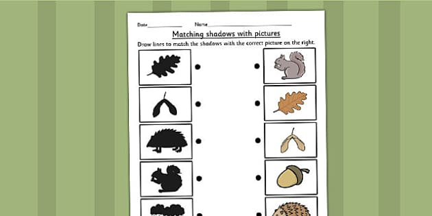 Autumn Shadow Matching Worksheet - seasons, weather, shadows