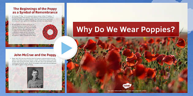 Why Do We Wear Poppies? PowerPoint, poppies, remembrance, poppy