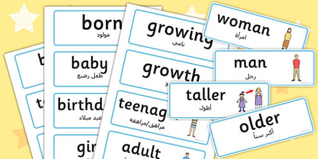 Growth Word Cards Arabic Translation - arabic, growth, word cards, word, cards