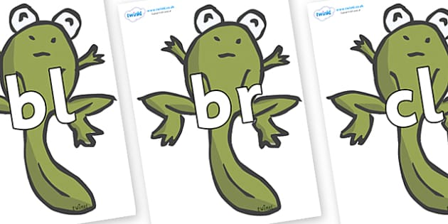 Initial Letter Blends on Froglets - Initial Letters, initial letter, letter blend, letter blends, consonant, consonants, digraph, trigraph, literacy, alphabet, letters, foundation stage literacy
