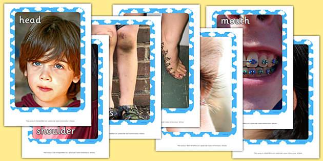 Head, Shoulders, Knees and Toes Photo Pack - head, shoulders, knees, toes