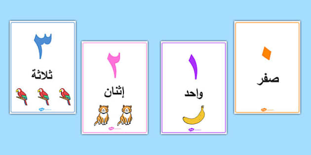 0 to 50 Number Word Image Posters Arabic - maths, numeracy, visual aid, information, frequent, early years, ks1, key stage 1, display