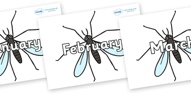 Months of the Year on Daddy long legs - Months of the Year, Months poster, Months display, display, poster, frieze, Months, month, January, February, March, April, May, June, July, August, September