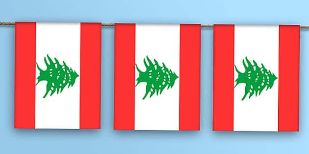 Lebanon Flag Bunting - lebanon flag, lebanon, flag, bunting, display bunting, display