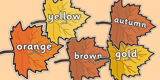 Autumn Words on Leaves Arabic Translation - arabic, autumn, words, leaves