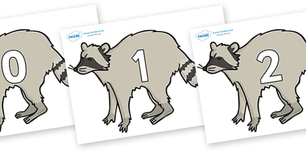 Numbers 0-50 on Racoons - 0-50, foundation stage numeracy, Number recognition, Number flashcards, counting, number frieze, Display numbers, number posters