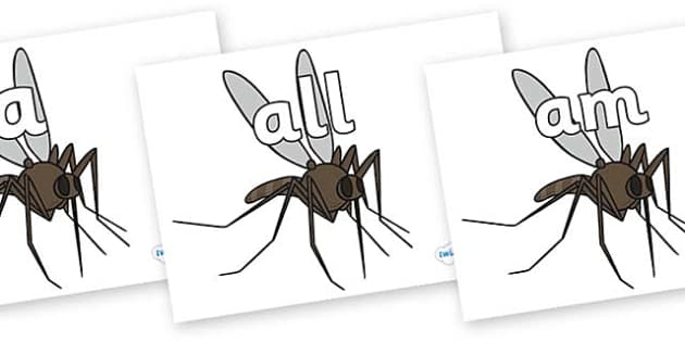 Foundation Stage 2 Keywords on Mosquitos - FS2, CLL, keywords, Communication language and literacy,  Display, Key words, high frequency words, foundation stage literacy, DfES Letters and Sounds, Letters and Sounds, spelling