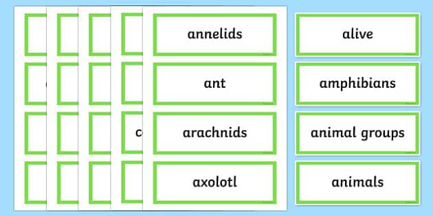 Friends or Foes Word Wall Display Cards - australia, Australian Curriculum, Friends or Foes, science, Year 4, word wall, display