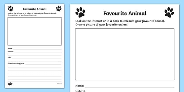 Favourite Animal Activity Sheet, worksheet