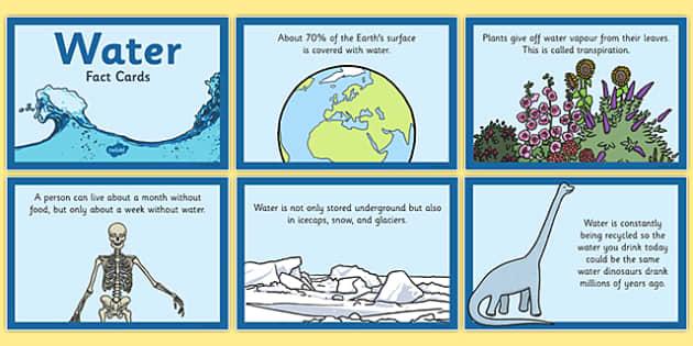 Water Fact Cards - water, fact cards, fact, cards, facts, card