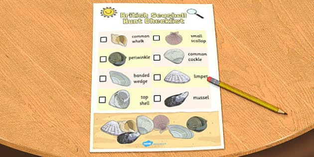 British Seashell Hunt Checklist - checklist, hunt, check, shell