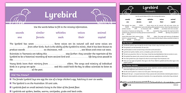 Australian Animals Years 3-6 Lyrebird Differentiated Cloze Passage Activity Sheet - australia, Australian Curriculum, animals, bird, lyrebird, differentiated, cloze, fast finisher, information, reading, worksheet