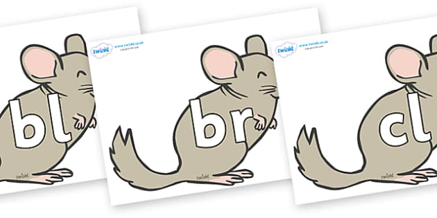 Initial Letter Blends on Chinchillas - Initial Letters, initial letter, letter blend, letter blends, consonant, consonants, digraph, trigraph, literacy, alphabet, letters, foundation stage literacy