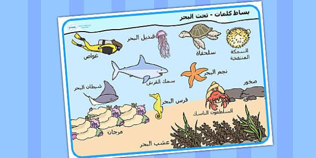 بساط كلمات عن تحت البحر عربي