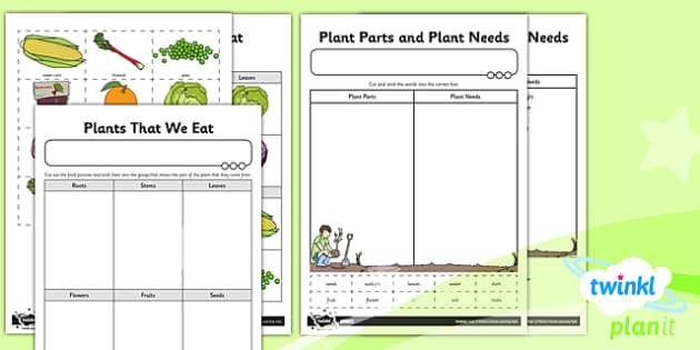 PlanIt - Science Year 2 - Plants Unit: Home Learning Tasks - planit