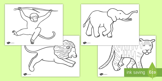 Jungle Animal-Themed Story Colouring Sheets - walking through the jungle, animals, story, book, colouring, fine motor skills, poster, worksheet, vines, A4, display, jungle, animal, lion, tiger, elephant, snake monkey, crocodile