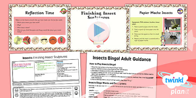 PlanIt - Art LKS2 - Lesson 6: Finishing Insect Sculptures Lesson Pack