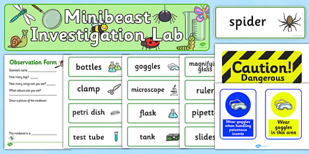 Minibeasts Investigation Lab Role Play Pack - Minibeasts, minibeast, investigation, lab, role play, pack,  knowledge and understanding of the world