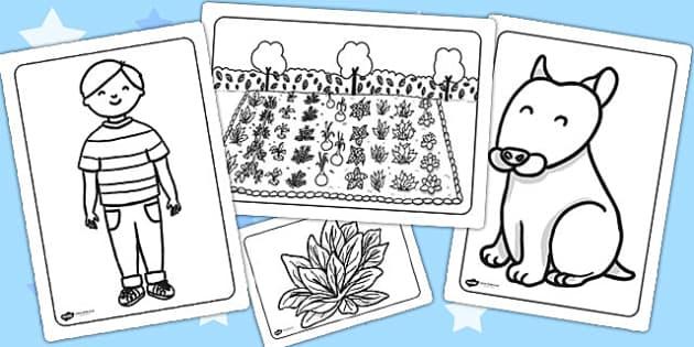 Oliver's Vegetables Colouring Sheets - Oliver's vegetables, colour
