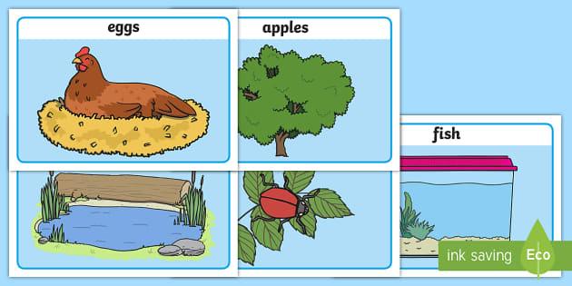 Editable Counting Basic Playdough Mats - counting playdough mats, editable number playdough mats, objects playdough mats, counting, numbers, sen counting
