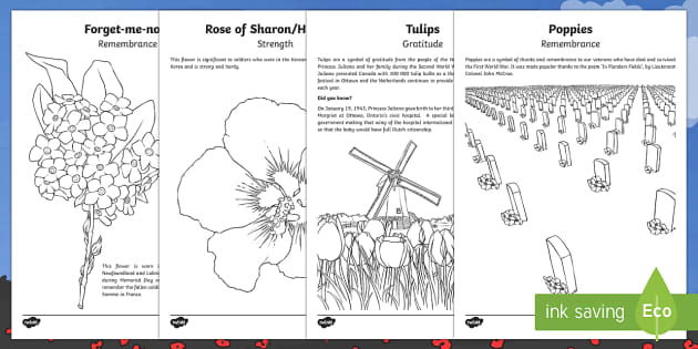 Remembrance Day Flowers Colouring Pages