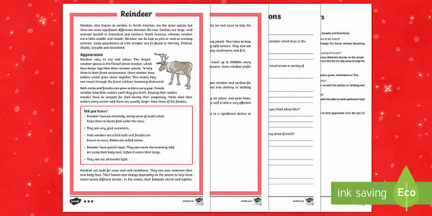 KS2 Reindeer Differentiated Reading Comprehension Activity - Christmas, Nativity, Jesus, xmas, Xmas, Father Christmas, Santa, reindeer, comprehension, Rudolph, c - Christmas, Nativity, Jesus, xmas, Xmas, Father Christmas, Santa, reindeer, comprehensi