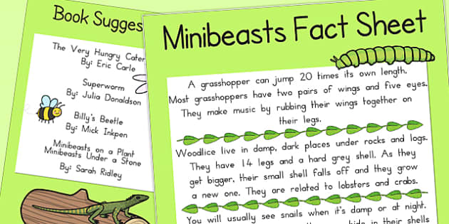 Minibeast Fact Sheet and Book Suggestions - australia, book