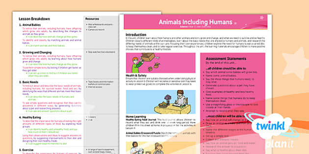PlanIt - Science Year 2 - Animals Including Humans Planning Overview - planit, year 2, science