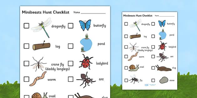 Minibeast Hunt Checklist - hunt checklist, minibeasts, insects, minibeast checklist, minibeast hunt, hunt checklist, minibeast hunt activity, minibeast search, insect hunt, minibeast hunt checklist activity, list of minibeasts