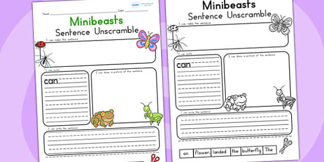 Minibeast Cute Sentence Unscramble - sentences, mini beasts
