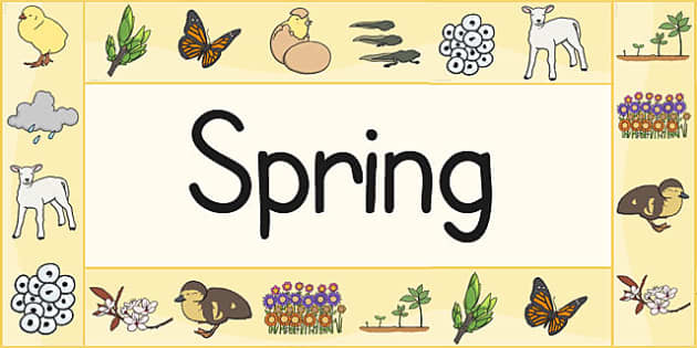 Spring Display Borders - Spring, Display border, border, display, lambs, daffodils, new life, flowers, buds, plants, growth