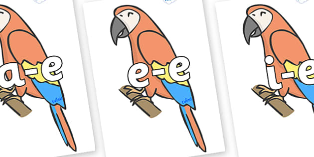 Modifying E Letters on Parrots - Modifying E, letters, modify, Phase 5, Phase five, alternative spellings for phonemes, DfES letters and Sounds