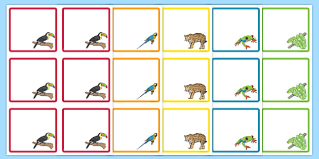 Rainforest Themed Editable Drawer Peg Name Labels - kapok tree, the great kapok tree, rainforest themed, editable, edit, drawer, peg, name, labels, display