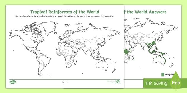 Tropical Rainforests Around the World Activity Sheet - World Around Us KS2 - Northern Ireland, worksheet, rainforest, tropical