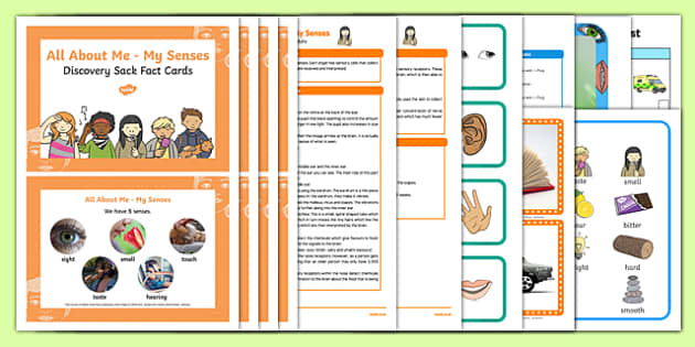 Ourselves All About Me My Senses Discovery Sack - Early Years, KS1, sight,taste, hearning, touch, smell, UTW