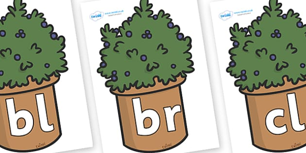 Initial Letter Blends on Plants - Initial Letters, initial letter, letter blend, letter blends, consonant, consonants, digraph, trigraph, literacy, alphabet, letters, foundation stage literacy