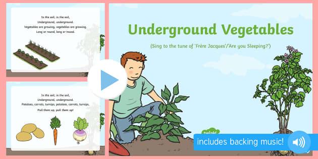 Underground Vegetables Song PowerPoint