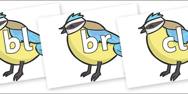 Initial Letter Blends on Birds - Initial Letters, initial letter, letter blend, letter blends, consonant, consonants, digraph, trigraph, literacy, alphabet, letters, foundation stage literacy