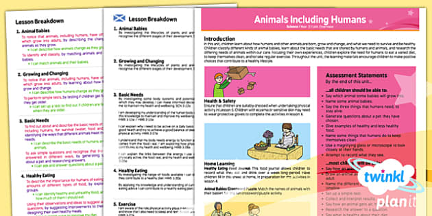 PlanIt - Science Year 2 - Animals Including Humans Planning Overview CfE - planit, CfE, human body, health, healthy diet, healthy food, exercise