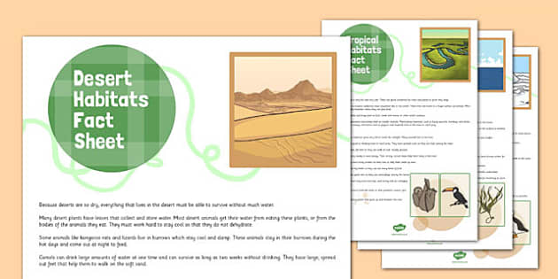 World Habitats Fact Sheets - world, habitats, fact, sheets, pack