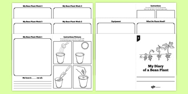 story booklet template