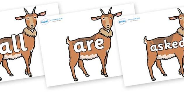 Tricky Words on Medium Billy Goats - Tricky words, DfES Letters and Sounds, Letters and sounds, display, words