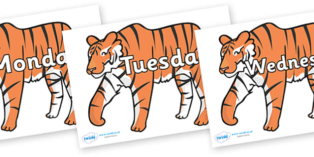 Days of the Week on Tigers - Days of the Week, Weeks poster, week, display, poster, frieze, Days, Day, Monday, Tuesday, Wednesday, Thursday, Friday, Saturday, Sunday