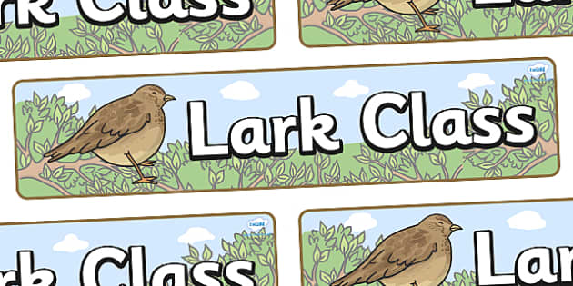 Lark Themed Classroom Display Banner - Themed banner, banner, display banner, Classroom labels, Area labels, Poster, Display, Areas