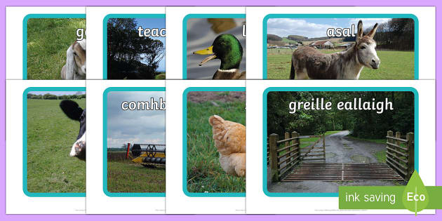 Ar an bhFeirm Photo Pack
