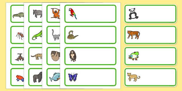 Editable Drawer - Peg - Name Labels (Jungle & Rainforest) - Jungle, Rainforest, Classroom Label Templates, Resource Labels, Name Labels, Editable Labels, Drawer Labels, Coat Peg Labels, Peg Label, KS1 Labels, Foundation Labels, Foundation Stage Label