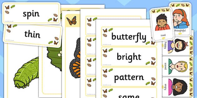 Butterfly Life Cycle Mind Map Starter Resource Pack  - butterfly